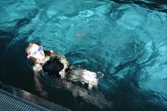 2015_schwimmen_3-klassen_0014