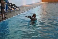 2015_schwimmen_3-klassen_0020