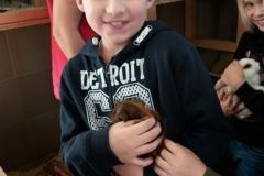Mini Zoo Ganster 2 Klassen (15)