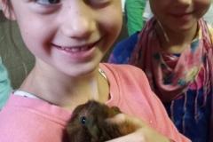 Mini Zoo Ganster 2 Klassen (20)