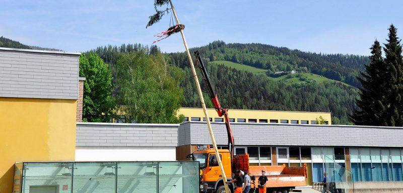 Der Baum wird aufgestellt